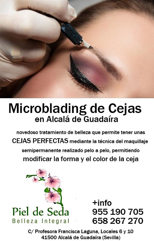 Mircroblading de Cejas en Alcalá de Guadaíra