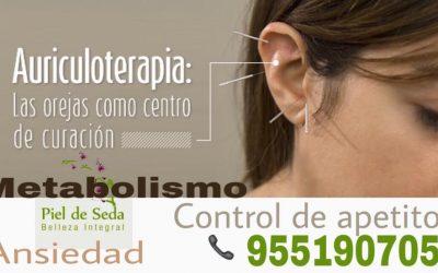 Auriculoterapia en Alcalá de Guadaíra